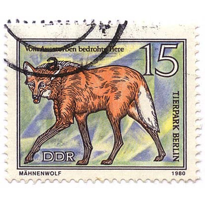 stamp chrysocyon ddr