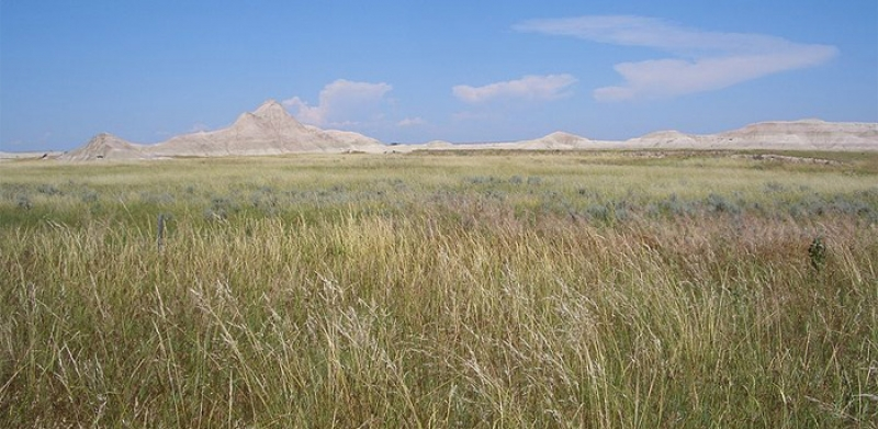 Oglala National Grassland, Nebraska, USA